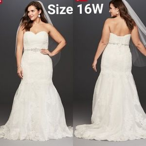 Lace 16W Wedding Dress with Scalloped Hem